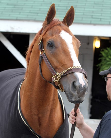 Whitmore at Churchill Downs on May 4, 2016.