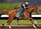 California Chrome worked a half-mile in :48 3/5 on June 4.