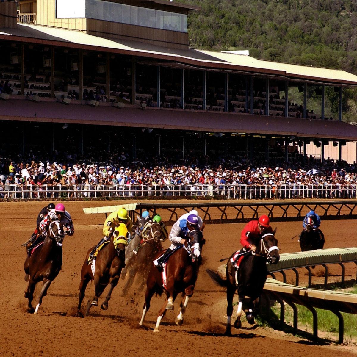 Casino complete guide racetracks u.s best neteller casino