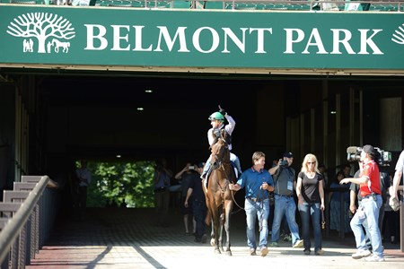 Exaggerator works at Belmont Park June 7, 2016