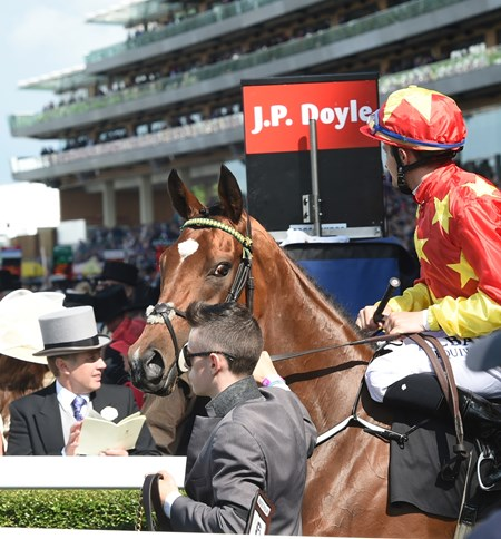 Jet Setting at Royal Ascot June 17, 2016