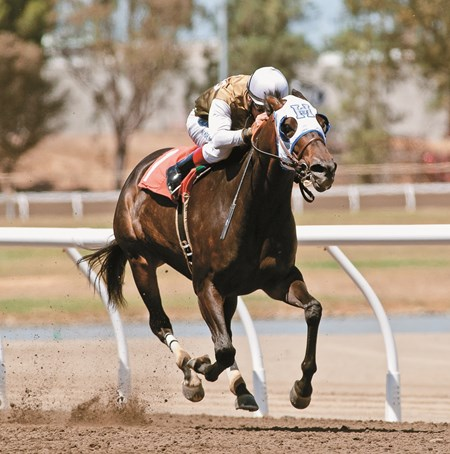 Jockey Russell Baze rides Handfull to victory in the California Governor's Cup at the California State Fair July 11, 2016.