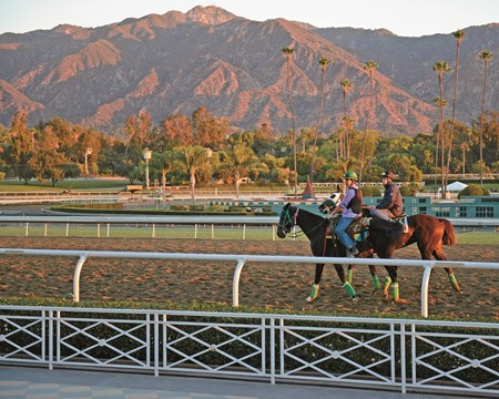 early morning scene at Santa Anita with the San Gabriel Mountains in background