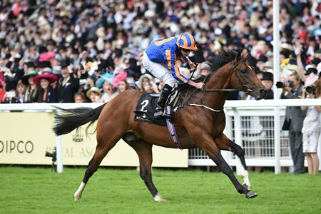 Churchill wins the 2016 Chesham Stakes at Royal Ascot on June 18, 2016.