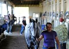 Asmussen Basks in Belmont Afterglow