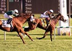 Phlash Phelps wins 2015 Maryland Million Turf Stakes