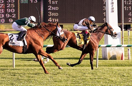 Phlash Phelps wins the 2015 Maryland Million Turf Stakes.