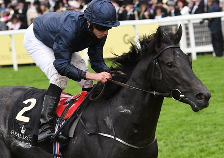 Caravaggio wins the Coventry Stakes at Royal Ascot June 14, 2016.