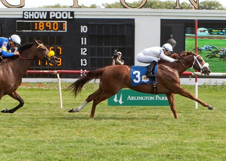 Stormin Elle winning The Mike Spellman Memorial Handicap at Arlington Internation June 2016, Jose Valdivia Jr. up