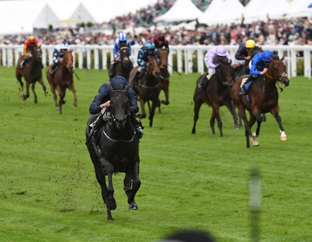 Carvaggio wins the Coventry Stakes at Royal Ascot June 14, 2016.