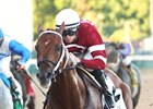 Creator, Gun Runner Work at Saratoga