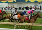 A clockwise trial event at Woodbine