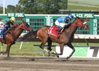 NJ-Bred Chublicious Captures Mr. Prospector