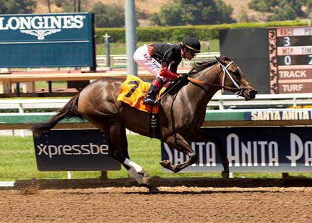 My California becomes the first winner for Calimonco