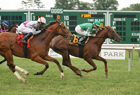 Middleburg, #6 with Joe Bravo riding, won the $100,000 Red Bank Stakes at Monmouth Park in Oceanport, New Jersey on Sunday, June 5, 2016. Second was #7 Vyjack with Chris Decarlo riding.