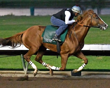 California Chrome - Los Alamitos, June 25, 2016