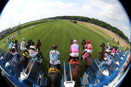 The start of the 23rd Running of The Just A Game (GI) at Belmont Park on June 11, 2016.