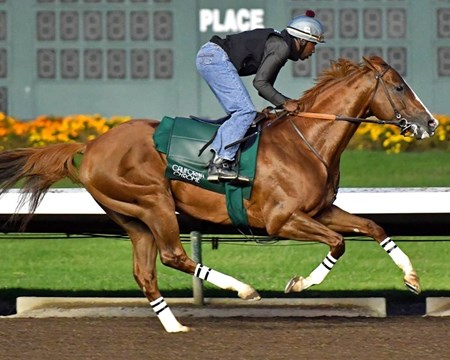 California Chrome - Los Alamitos, June 11, 2016