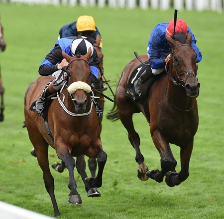 Jennies Jewel wins the Ascot Stakes at Royal Ascot June 14, 2016