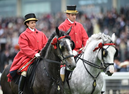 The Queen's Horses at Royal Ascot June 14, 2016.