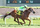Half Brothers Finish One-Two in Ohio Stakes