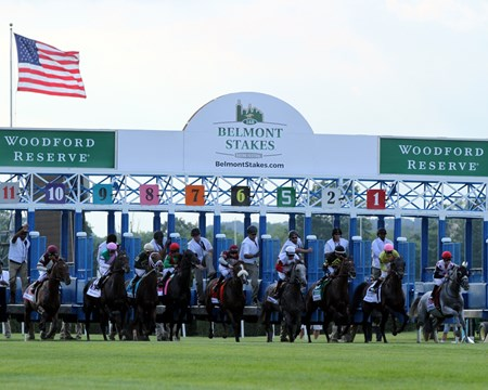 The field for the Manhattan leave the starting gate at Belmont Park on June 11, 2016.