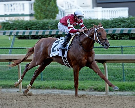 Gun Runner Dominant In Matt Winn Stakes Bloodhorse