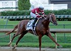 Gun Runner rolls to victory in the Matt Winn Stakes