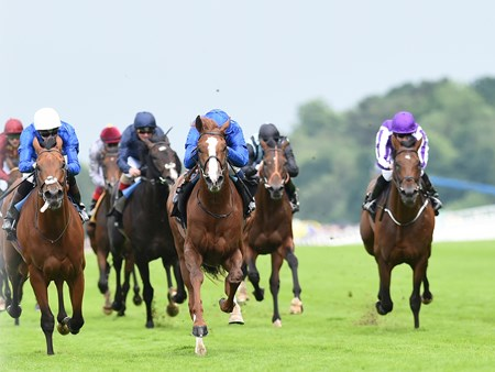 Hawkbill wins the Tercentary Stakes at Royal Ascot June 16, 2016