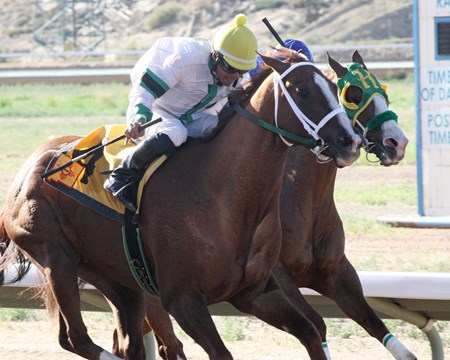Infinite Bull wins the 2016 NM Horseman's Association Stake