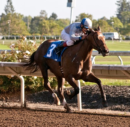 Seduire, with jockey Russell Baze, wins the 2014 Wine County Debutante at the Sonoma County Fair in California on August 8.