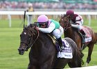 Flintshire, Twilight Eclipse Face Off