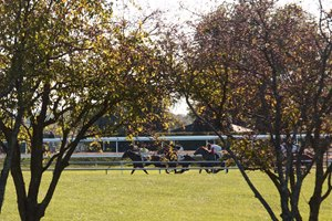 Racing during Keeneland's fall meet