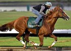 California Chrome worked five furlongs in :59 1/5 June 18.