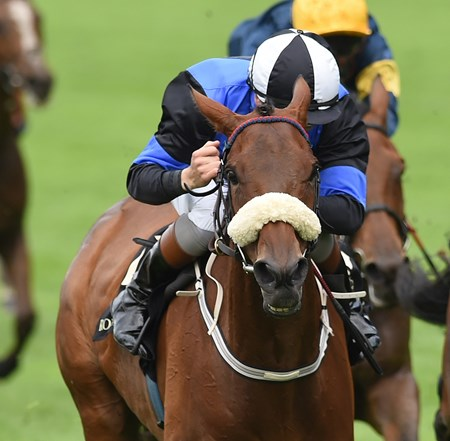 Jennies Jewel wins at Royal Ascot June 14, 2016.