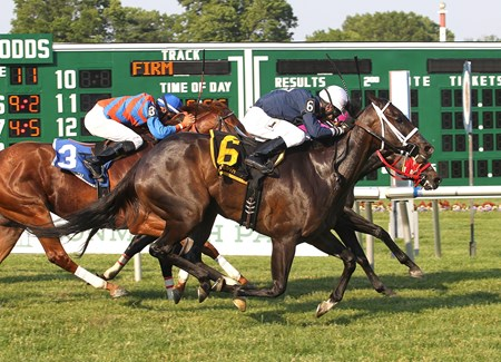 Indian Splendor #6 with Antonio Gallardo riding edges #1 Forest Funds and Jonathan Gonzales to win the $60,000 Honey Bee Stakes at Monmouth Park in Oceanport, New Jersey on Saturday June 11, 2016.