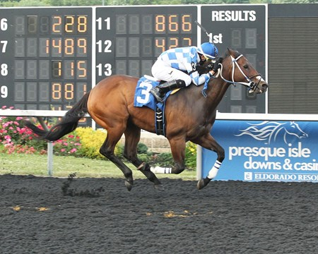 Stormofthecentury wins at Presque Isle Downs June 20, 2016