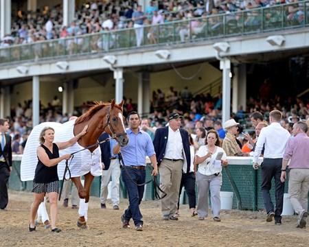 Paid Up Subscriber wins the Fleur de Lis (gr. II), Wise Dan parading and Pleuven with Channing Hill wins the Wise Dan (gr. II)  at Churchill Downs on June 18, 2016.