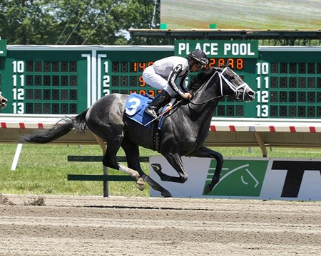 2 year old Bronson w/ Paco Lopez up in Race 2 on Saturday June 18,2016 at Monmouth Park in Oceanport, New Jersey.