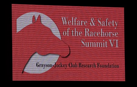 Welfare and Safety of the Racehorse Summit VI on July 8, 2015, at Keeneland in Lexington, Ky.