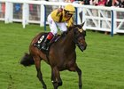 More Globetrotting Likely for Lady Aurelia in 2017