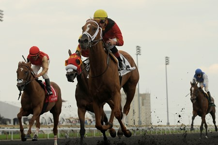 Theogony and jockey Gary Boulanger win the Belle Mahone Stakes August 30, 2015 Woodbine Racetrack