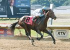 Mo Tom wins Ohio Derby in June