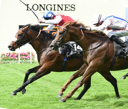 Profitable wins the King's Stand Stakes at Royal Ascot June 14, 2016.