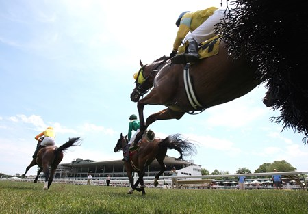 Andi'amu #6 (L) with Jack Doyle riding won the Ratings Hurdle Handicap at Monmouth Park in Oceanport, New Jersey on Friday June 17, 2016. Photo By Bill Denver/EQUI-PHOTO