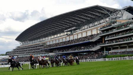 Sword Fighter wins the 2016 Queens Vase at Royal Ascot on June 17, 2016.