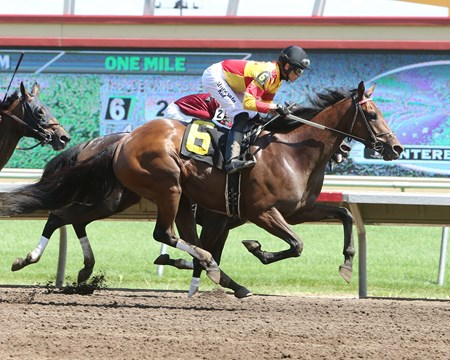 "Thunder and Honey ""1,000 Career Win for Trainer Mac Robertson"" at Canterbury Park  June 18, 2016"