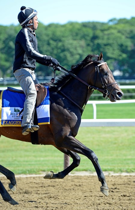 Exaggerator with Peedy Landry on the main track on June 10, 2016.