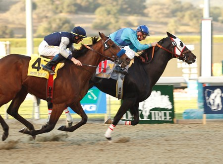 Bold Chieftain and Russell Baze hold off Celtic Dreamin and Garrett Gomez to win the $250,000 California Cup Classic Nov. 3, 2007.