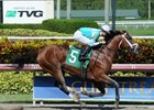Requite Returns at Winner at Gulfstream Park